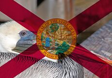 Free Florida Flag With Pelican Royalty Free Stock Photo - 168936995