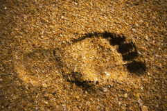 Florida - Footprint Royalty Free Stock Photography