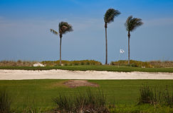 Florida Golf Course Royalty Free Stock Photography