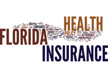 Florida Health Insurance Text Background Word Cloud Concept stock illustration