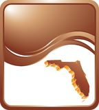 Florida icon on bronze wave background Royalty Free Stock Images