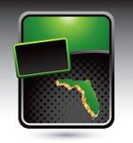 Florida-Ikone auf grüner stilisiert Reklameanzeige Stockbilder
