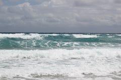 Florida-Küste Stockbild