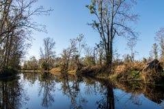 Florida kanal royaltyfri foto