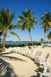 Florida Keys. Beautiful Florida Keys along the shoreline with palm tree and beach lounge chairs stock images