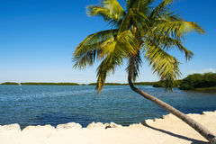 Florida Keys Stock Photos