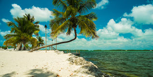Florida Keys Stock Images