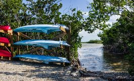 Florida Keys Canoe Launch. Rental canoes and kayaks wait beside a launch area in Long Key State Park royalty free stock images