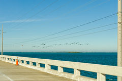 Florida Keys coastal highway Stock Images