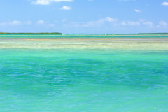Florida Keys Island lanscape. Colorful seascapes in the Florida Keys stock photography