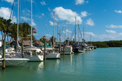 Florida Keys Marina. Sailboats in a marina in the Florida Keys royalty free stock photography