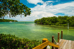 Florida Keys. Scenic view of the Florida Keys with mangroves and boat cruising by in the background stock images