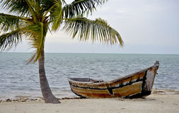 Florida Keys Tropical Scenic Stock Images