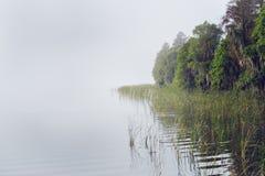 Florida Lake Stock Photography
