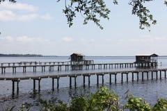 Florida landscape Royalty Free Stock Photo