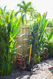 Florida landscaping and yard work royalty free stock photography