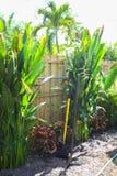 Florida-Landschaftsgestaltung und Yardarbeit Lizenzfreie Stockfotografie