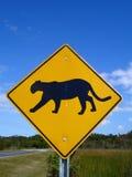 Florida-Leoparden-Überfahrt Stockfoto