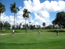 Florida lifestyle. Playing golf in Miami Royalty Free Stock Images
