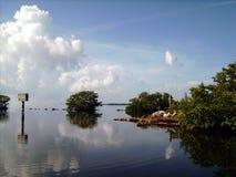 Florida Miami, härliga reflexioner i öppningen för svart punkt Arkivbilder