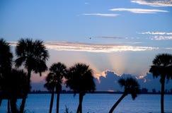 Florida-Morgen Lizenzfreies Stockbild