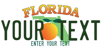 Florida number plate. Customized Florida number plate with orange vector illustration