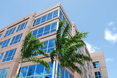 Florida Office Building Royalty Free Stock Photo
