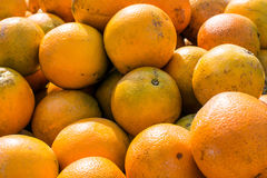 Florida oranges background. A background of Florida oranges on display at a produce stand Royalty Free Stock Photography