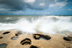 Florida Palm Coast Washington Oaks State Park Coquina Rock Beach Royalty Free Stock Photos