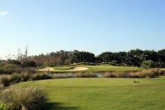 Florida par 3. A par 3 over water on a Florida golf course Stock Photos