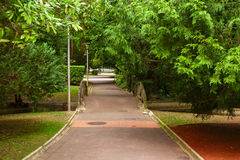 Florida park in the city of vitoria Stock Photography