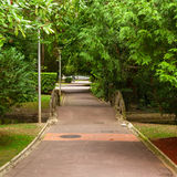 Florida park in the city of vitoria Royalty Free Stock Photography