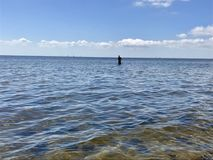 Florida. Peaceful fishing in port charlotte stock photos