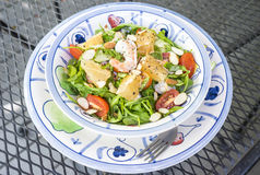 Florida Pink Shrimp Salad Stock Image