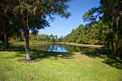 Florida Pond and Park Royalty Free Stock Photography