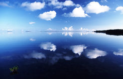 Florida Reflections 2. Reflections in the Florida Keys. Paradise Royalty Free Stock Images