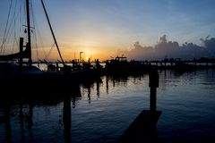 Florida soluppgång Arkivbild