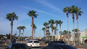 Florida-Sommer Lizenzfreies Stockfoto