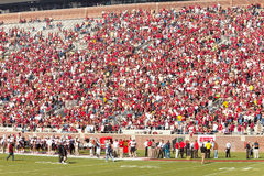 Florida State Home Football Crowd Stock Photos