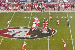 Florida State University Football Stock Photography