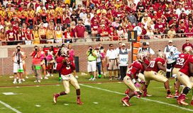 Florida State University Football Royalty Free Stock Image