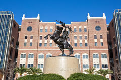 Florida State University Statue Stadium Stock Images