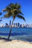 Florida stil, Miami royaltyfria bilder