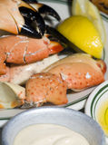 Florida stone crab claws Royalty Free Stock Images