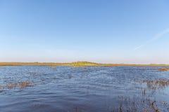Florida-Sumpfgebiet, Airboatfahrt am Everglades-Nationalpark in USA Populärer Platz für Touristen stockfotos