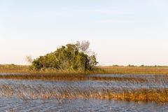 Florida-Sumpfgebiet, Airboatfahrt am Everglades-Nationalpark in USA Populärer Platz für Touristen lizenzfreie stockbilder