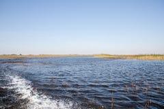 Florida-Sumpfgebiet, Airboatfahrt am Everglades-Nationalpark in USA Populärer Platz für Touristen lizenzfreie stockfotografie