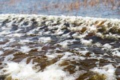 Florida-Sumpfgebiet, Airboatfahrt am Everglades-Nationalpark in USA Populärer Platz für Touristen stockbilder