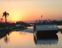 Florida-Sumpfgebiete Stockbilder