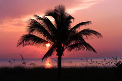Florida Sunrise Royalty Free Stock Images